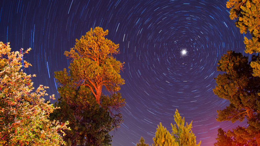 north-star-with-star-trails